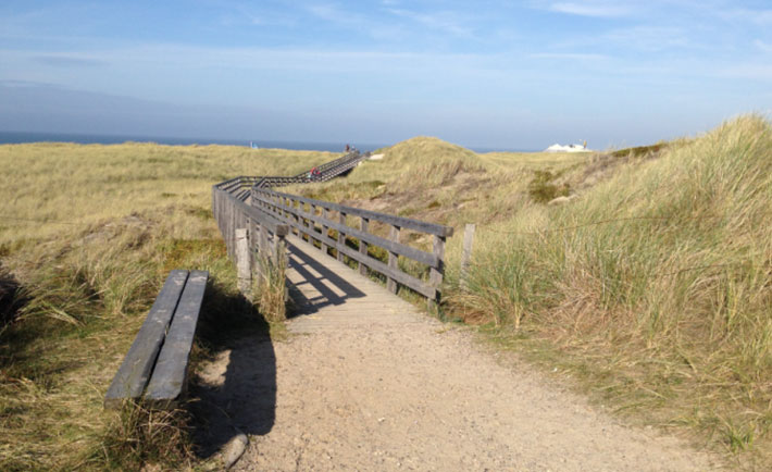 optimized-sylt-view-country