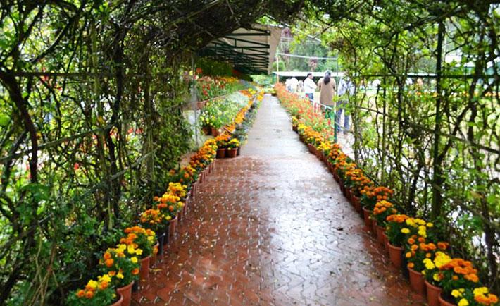optimized-ooty-queen-of-hill-station-botanical-garden-2