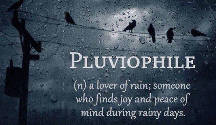 optimized-things-we-love-about-rain-pluviophile