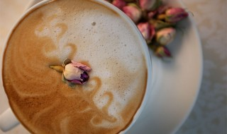 Acoustic Tea Lounge - Rose Latte