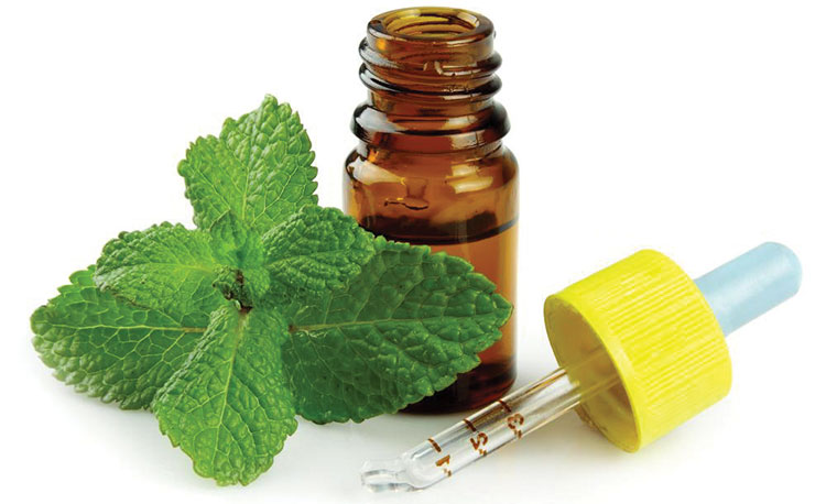 peppermint-and-oil-bottle