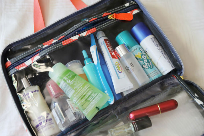 travel-mini-series-toiletries-bag