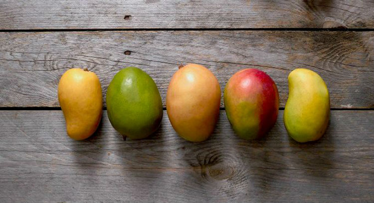 Mango_varieties_5_bright_682x370