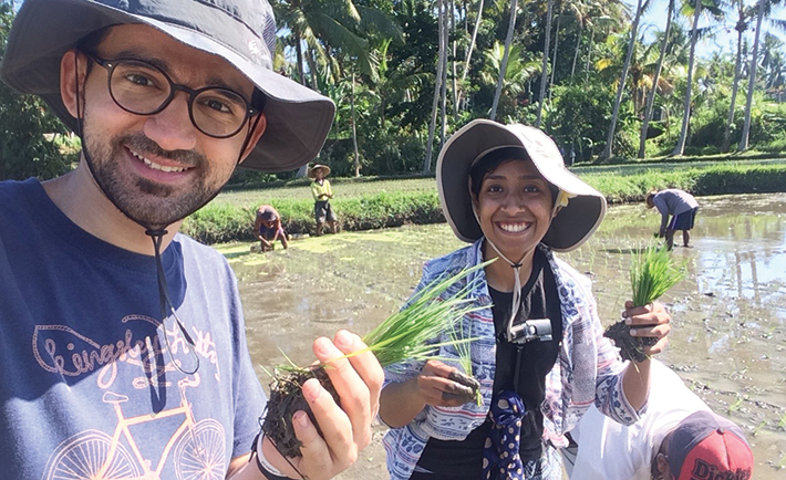 Volunteering to planting rice in Indonesia.
