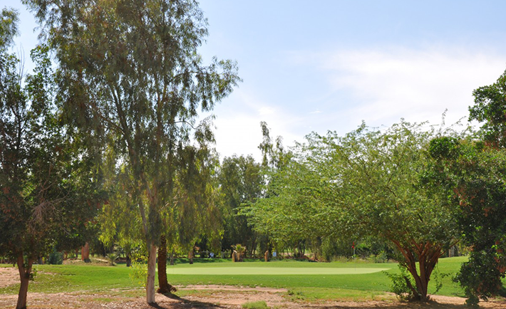Photo Credit: golf.turkishairlines.com